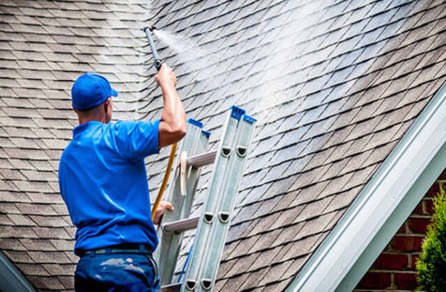 savannah roof cleaning